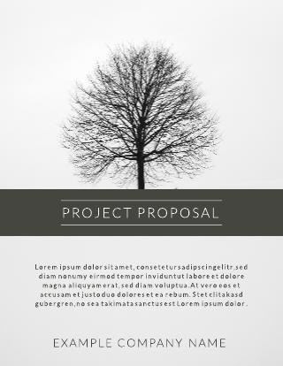 Minimalist gray toned project proposal template