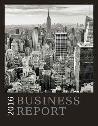annual business report sample