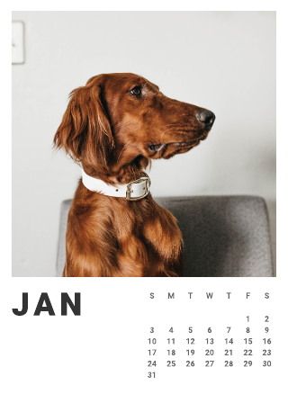 2021 Photo Calendar Template