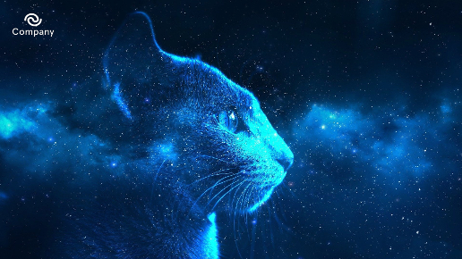 Night Zoom background
