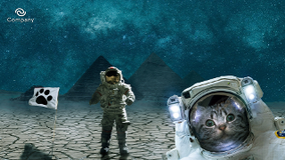 Space kitty Zoom background