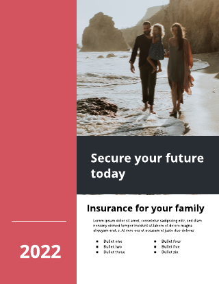 Red Insurance Flyer Template