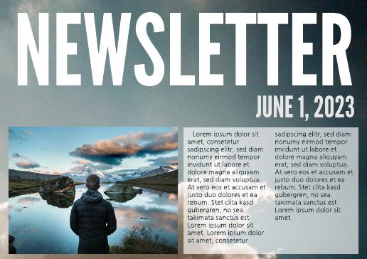 Bold Newsletter